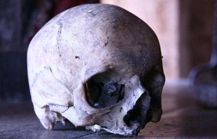 berkeley-castle-skull