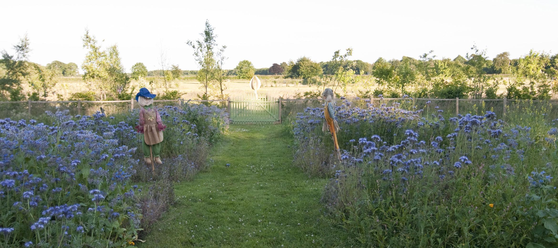 kingscote-herb-garden