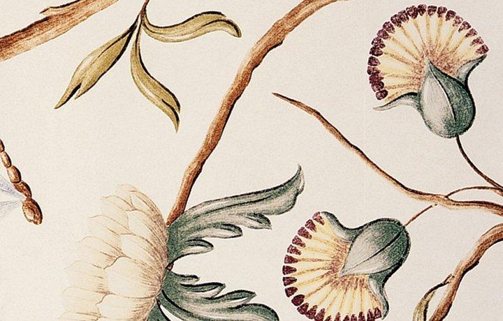 AdamsEden-Ivory-Lewis-and-Wood
