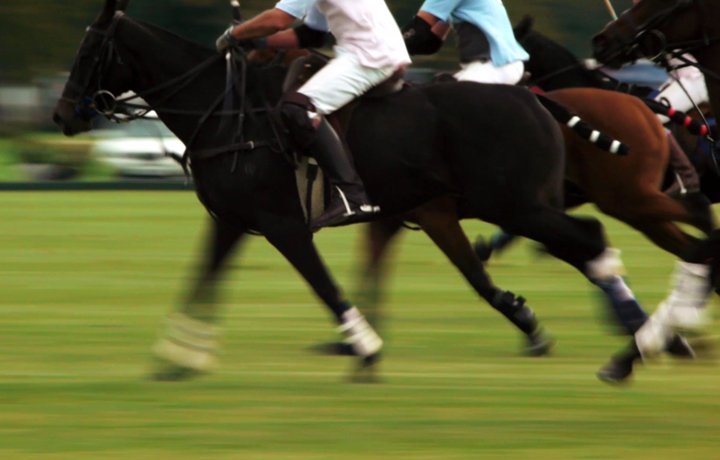 cirencester-polo-club-featured
