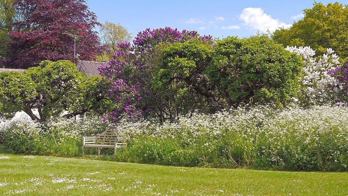 bruern-holiday-cottages-bookers-cottage-garden