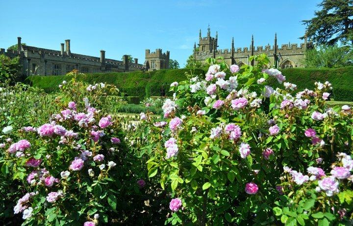 sudeley-queens-garden-featured
