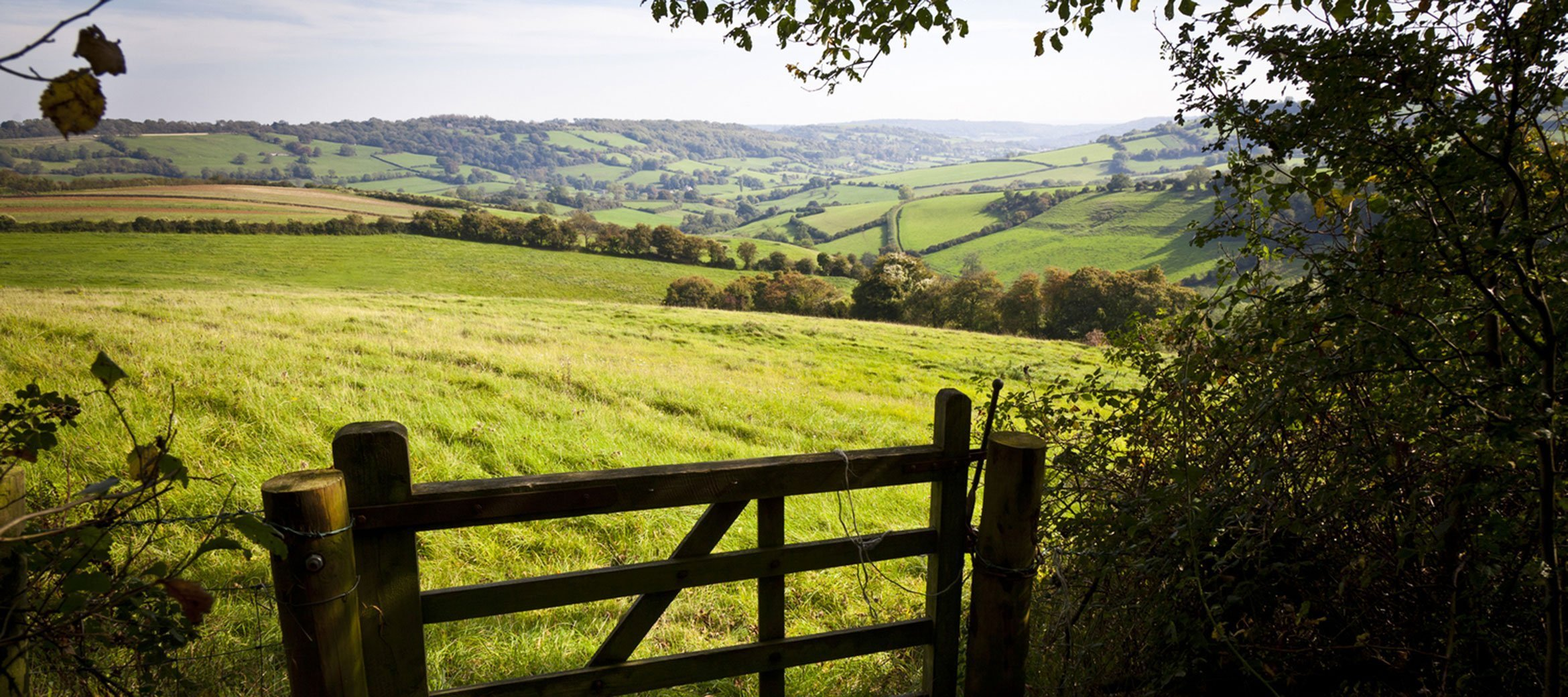 bradley-house-wiltshire-countryside