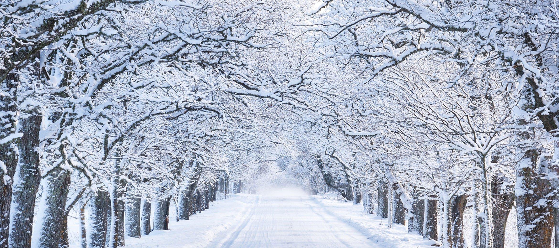 bradley-house-winter-drive