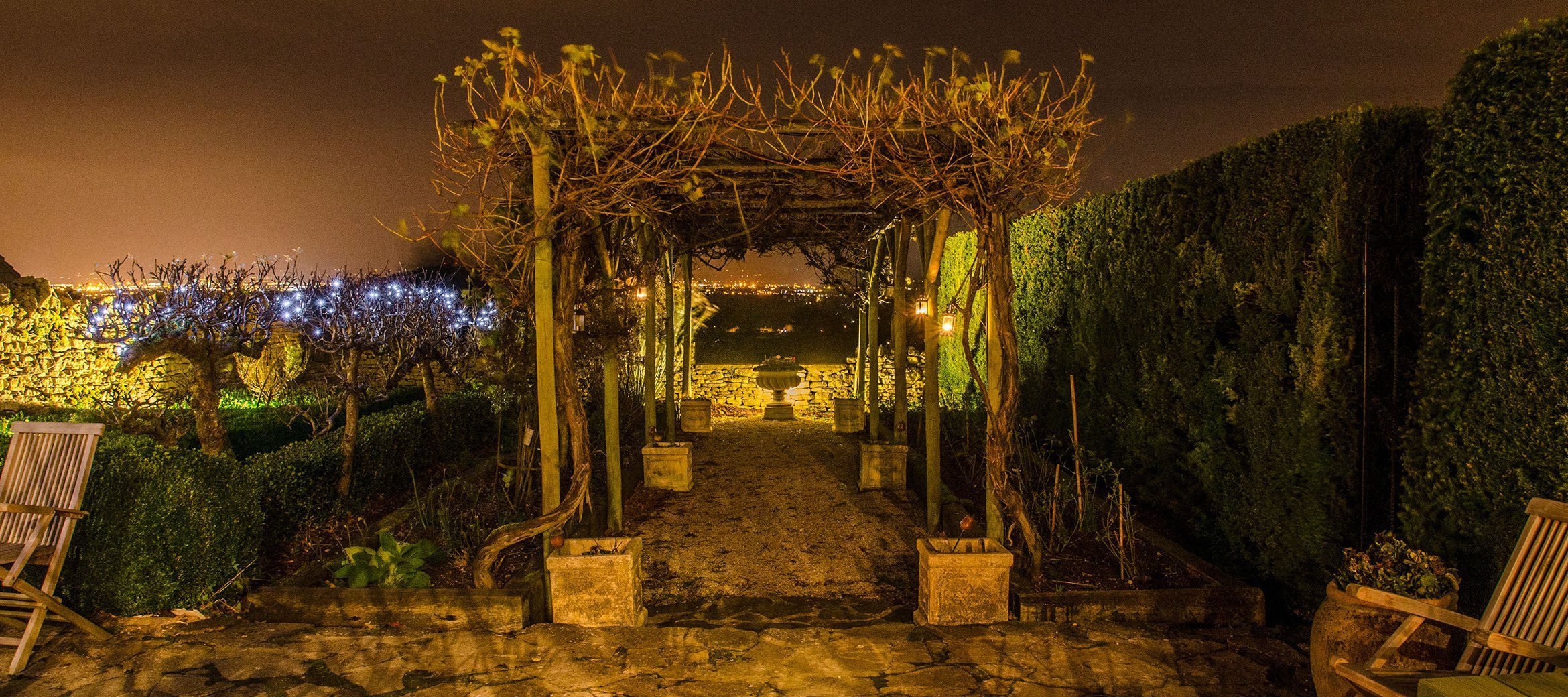 dryhill-night-vines