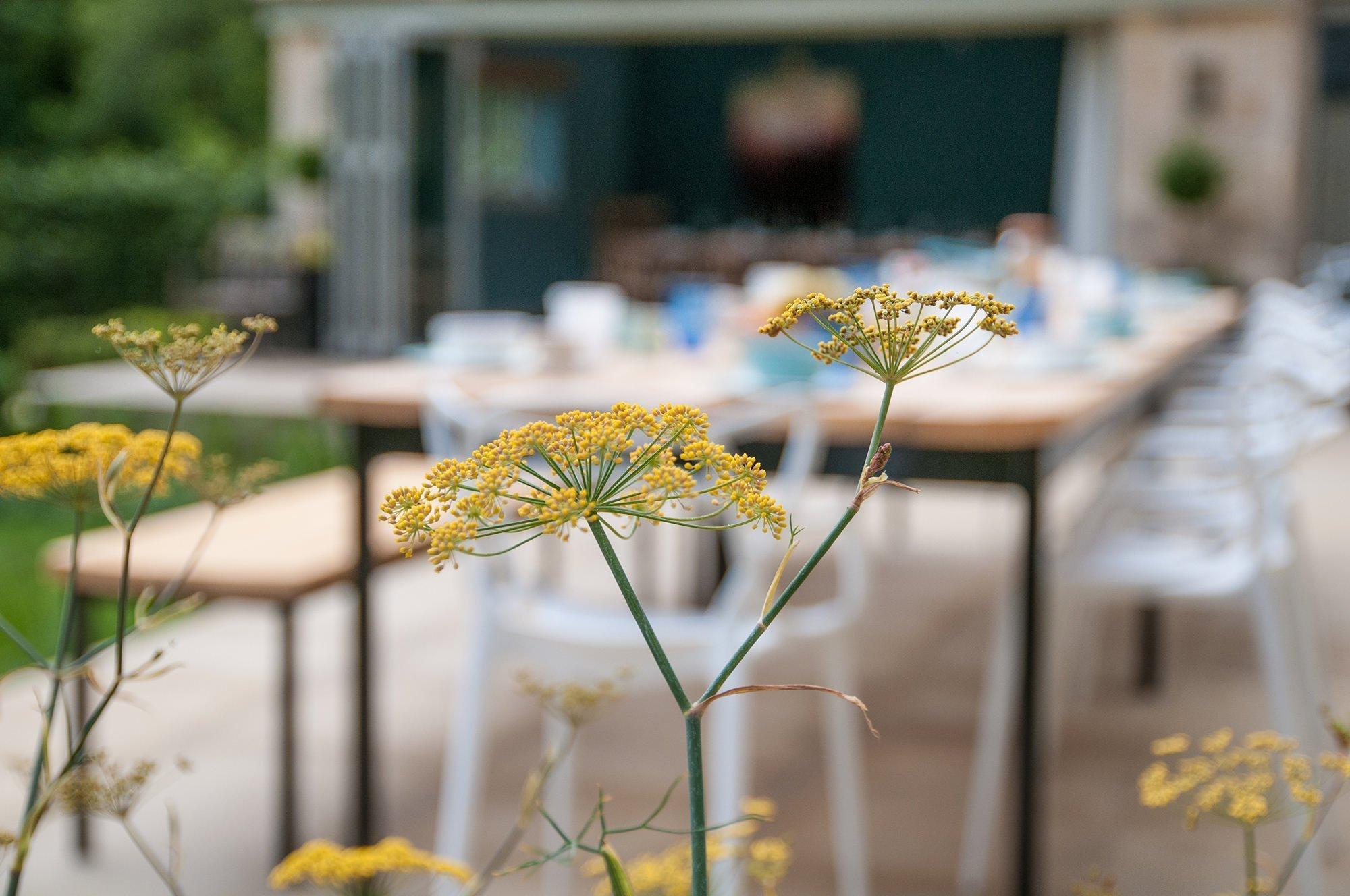 lower-brook-house-flower-terrace